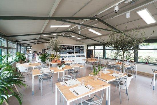 Le Lune ristorante: Tanta luce tante piante
