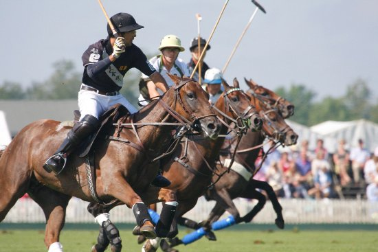 Cirencester Park Polo Club