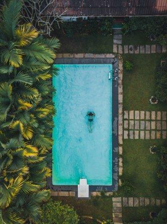 The Villa Romantica: Swimming pool.