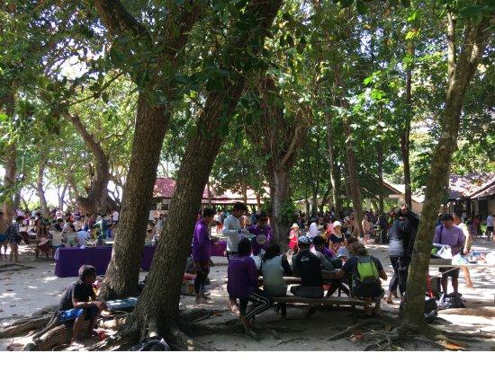 Similan Islands : Остров № 8