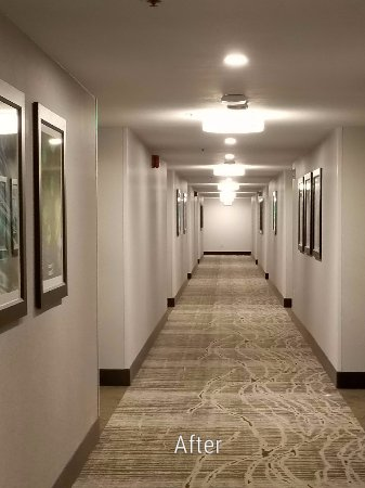 Best Western Agate Beach Inn: This  is our newly remodeled Hallways.