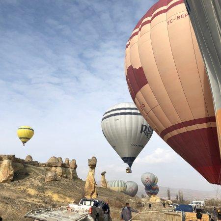 Royal Balloon: photo4.jpg