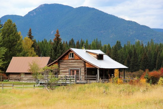 Abbott Valley Homestead: Authentic log cabin!  Mickey's is a 2br/1ba lovingly preserved original log cabin.  Meadow setti