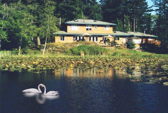 Eastsound, Вашингтон: Pond View Otters Pond B&B