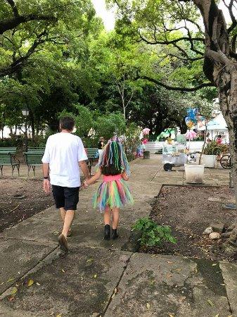 Passeio Público : Janeiro-Fevereiro/2018- No passeio publico ocorreu, aos domingos de manha, baile infantil