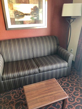 Watertown, Dakota do Sul: Room 424 pull out sofa