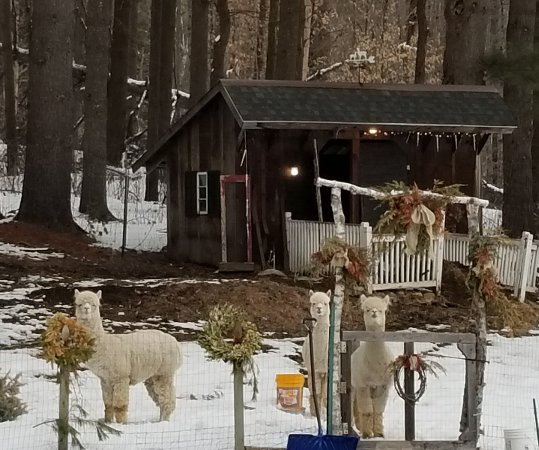 Jamaica, Вермонт: 20180218_162214_large.jpg