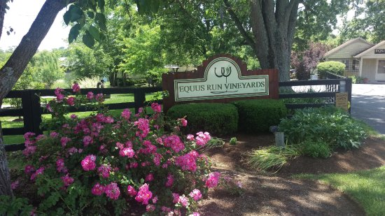 Equus Run Vineyard & Winery