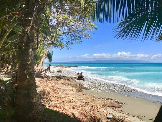 Playa Matapalo in front of Casa Verde Cabo Matapalo Beach house