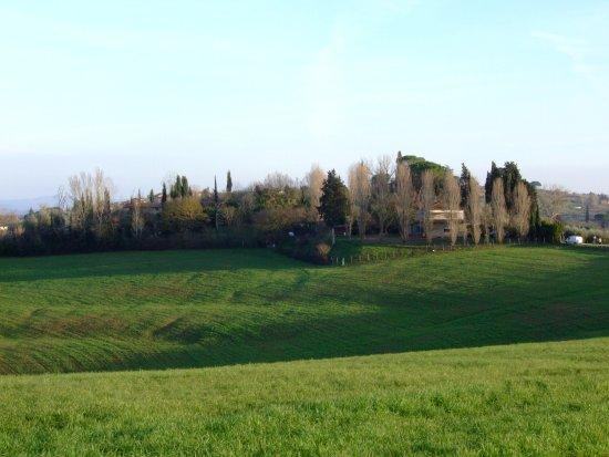 Ponsacco, Italia: La campagna circostante
