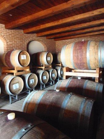 Giaglione, إيطاليا: Cantina Martina: zona invecchiamento vini 