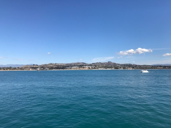 Dana Point, CA: The view throughout the trip!