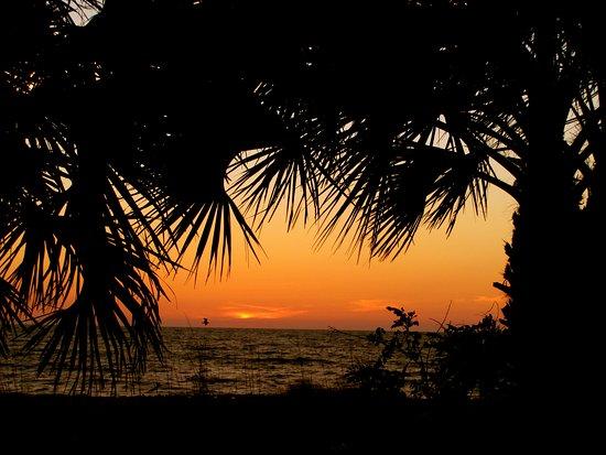 The Beachcomber: Sunset At The Beach