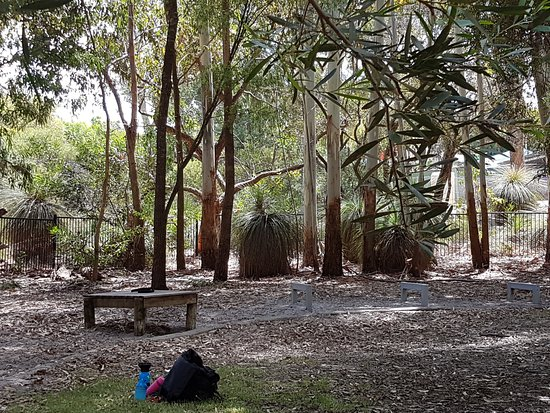 Yarra Vista Dog Park