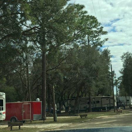 Holt, FL: photo1.jpg