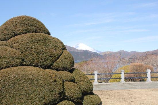 Onshi Hakone Park: 奇麗に保たれた木々と富士山