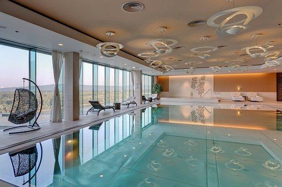 Grand Hotel River Park Bratislava: Pool