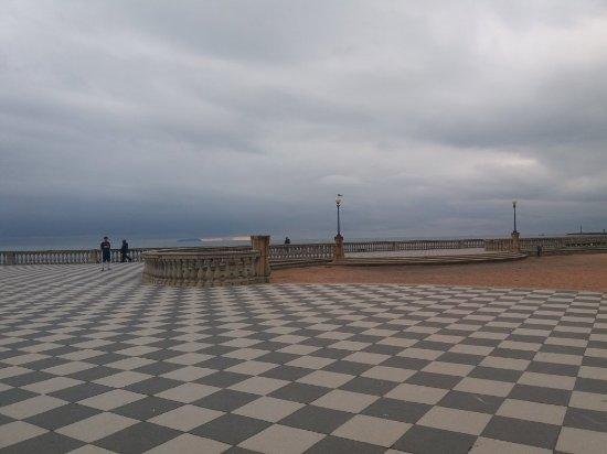 20180216_160605_large.jpg - Picture of Terrazza Mascagni, Livorno ...