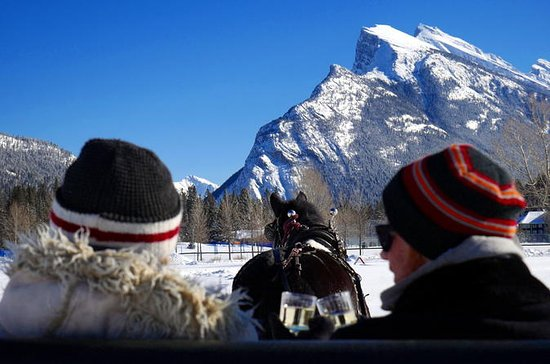 Private Horse-Drawn Sleigh Ride In Banff