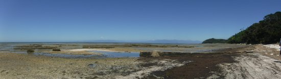 Collingwood, New Zealand: this is the start of Fairwell Spit and a known place for whale strandings