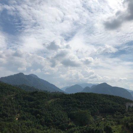 写真Gaharu Tea Valley枚