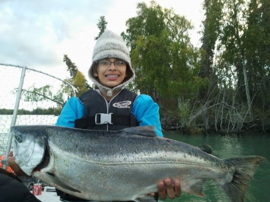 Silver salmon on the Kenai river