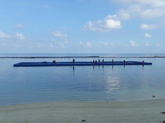Atolón Kaafu: สระว่ายน้ำกลางทะเล