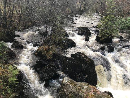 Kilchrenan, UK: Waterfall and rapids adjacent.