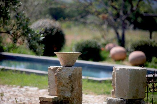 Saint-Saturnin-les-Apt, Francia: detail piscine