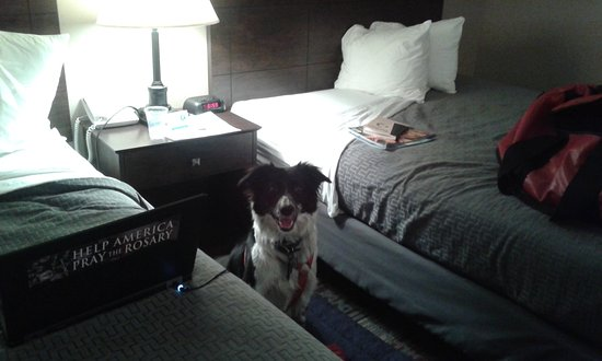 Best Western Saranac Lake: too small for disabled person needs, good thing dog was only 50lbs.