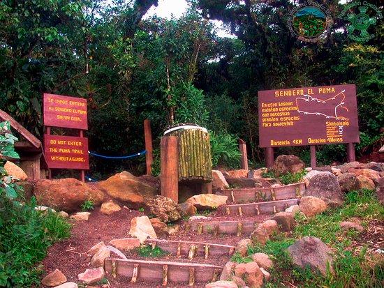 Mombacho Volcano Natural Reserve Entrada Al Sendero El Puma