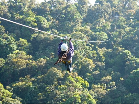 Monteverde Cloud Forest Reserve, Costa Rica: Canopy Tour