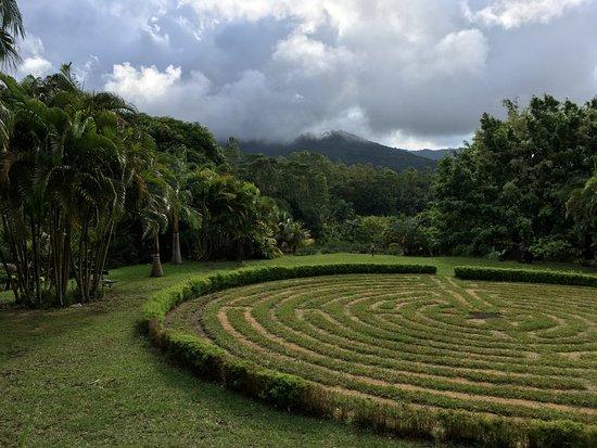 Lakaz Chamarel Exclusive Lodge: Zicht vanop het yoga-dek