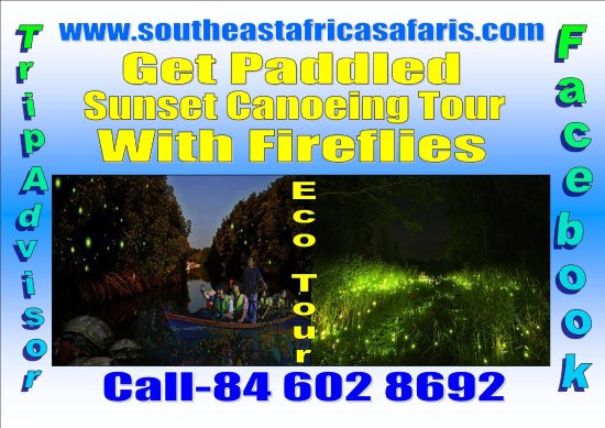 South East Africa Safaris