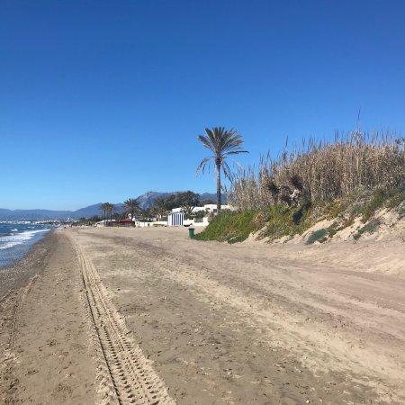 White Pearl Beach Restaurant Elviria Marbella