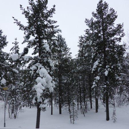 Lapland Hotel Riekonlinna: Vista dalla camera