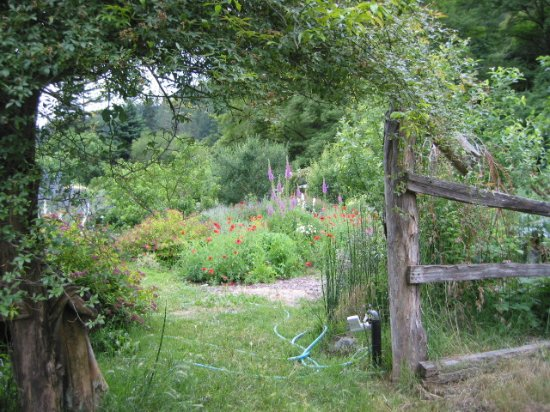 Orleans, Kalifornien: Organic gardens.
