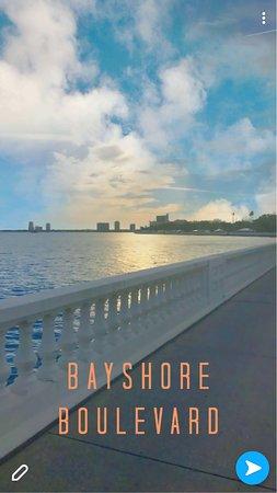 Bayshore Boulevard: Gorgeous!