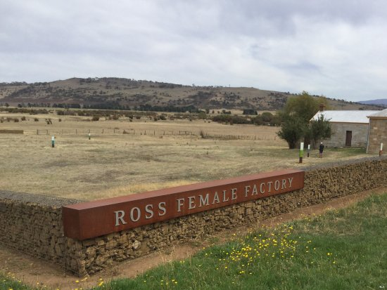 Ross, Australie : A sad but interesting place