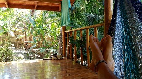 Surf casitas santa teresa costa rica omd men for Hotel casita amarilla