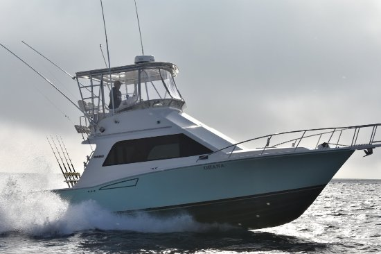 Dana Point, Kalifornien: CABO Yachts 35' Flybridge for 1/2 day, 3/4 day, Full day & Overnight fishing charters.