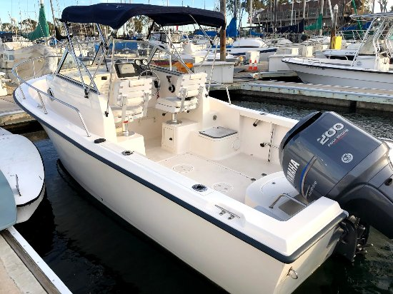 21 Sea Hunt Walkaround With Cuddy For Rent Picture Of Harbor