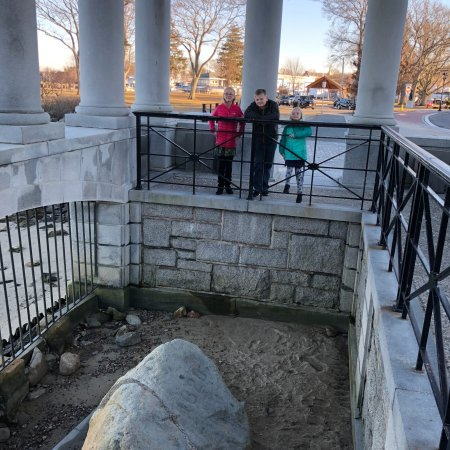 Plymouth Rock: photo1.jpg