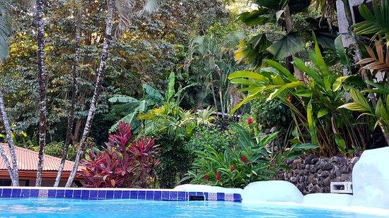Hotel El Jardin Photo