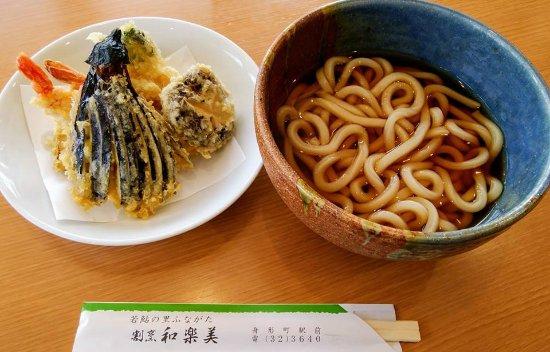 Funagata-machi, Japan: 天ぷらうどん