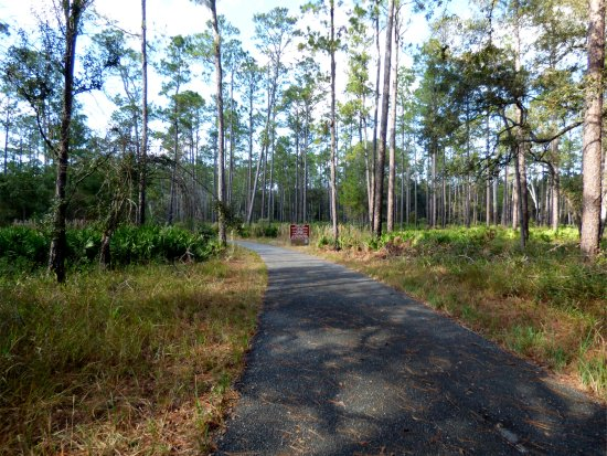 White Springs, FL: Trail