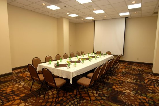 Embassy Suites by Hilton Dallas Love Field: Meeting room