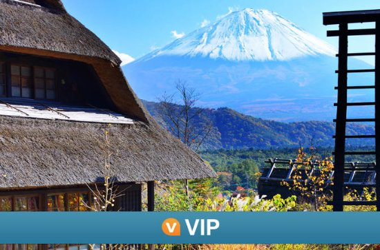 Viator VIP: Mt Fuji Private Tour with...