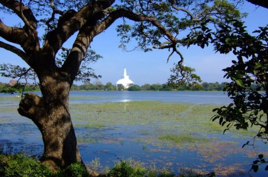 Anuradhapura Private Day Trip from...