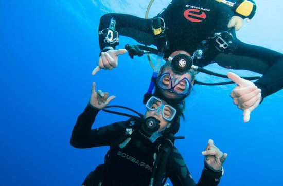 SSI Discover Scuba Diver with 1 dive ...